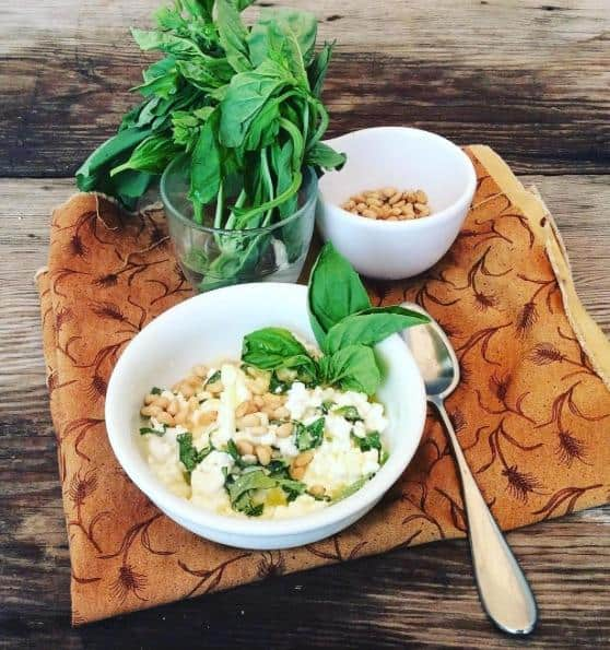 Savory Cottage Cheese With Basil And Pinenuts The Healing Gerd Rd